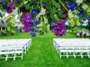 Outdoors Wedding Decor